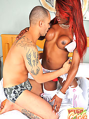 Interracial sex action tgirl topping
