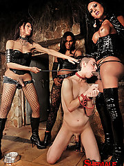 Trio of tranny dommes treat their slave wrong